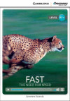 Cdir Beg Fast: Need For Speed Bk/online